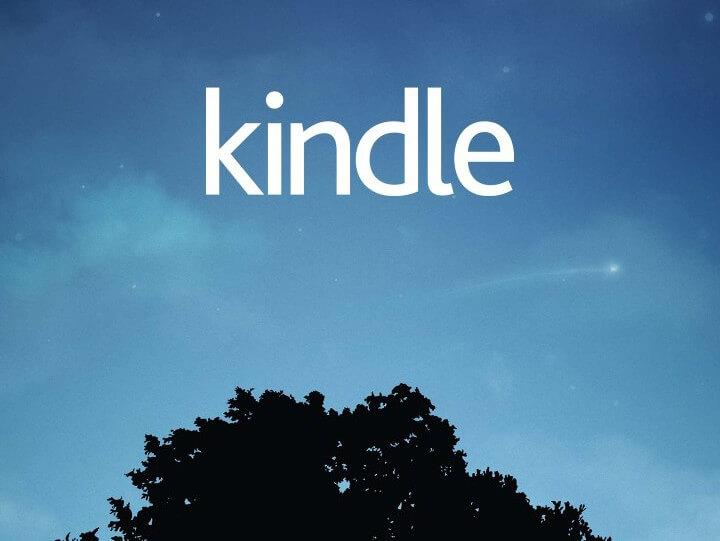 TalkBack使わないなんてもったいない!テキスト読み上げ機能でKindle本の読書をしよう【Android ユーザー向け】